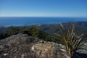 View from St Patricks Head Reserve